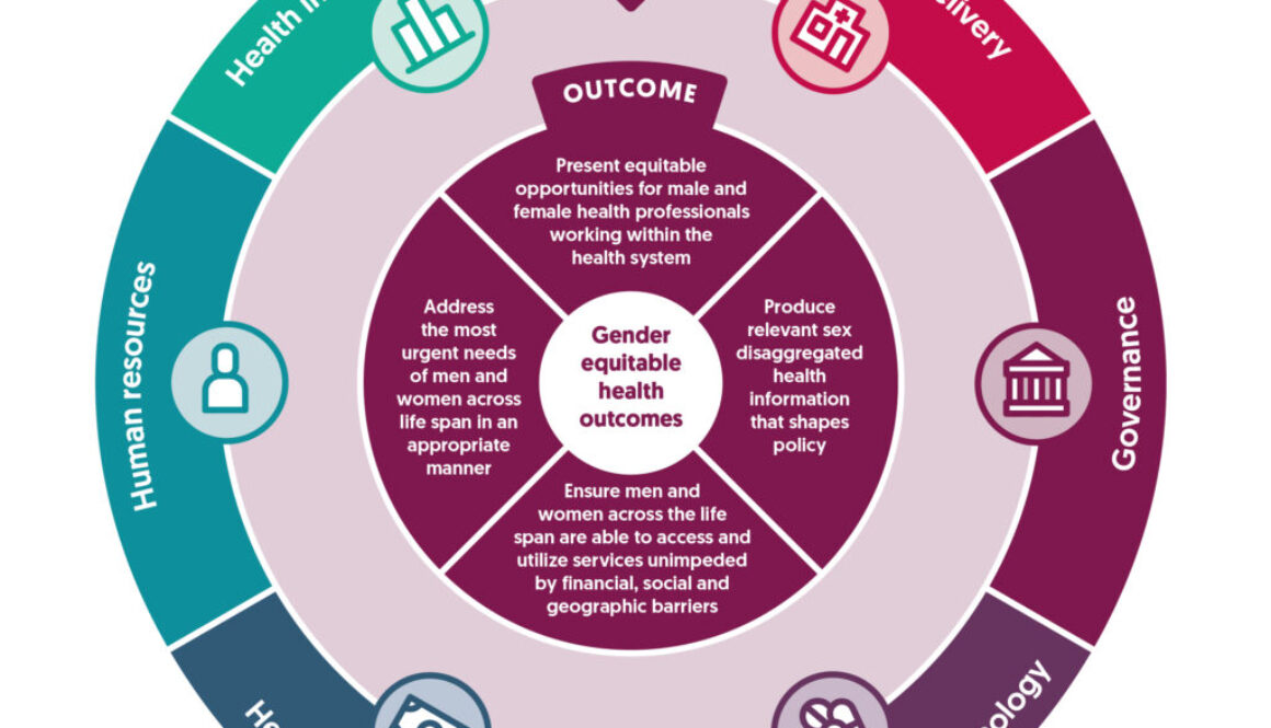 Gender policy health systems diagram
