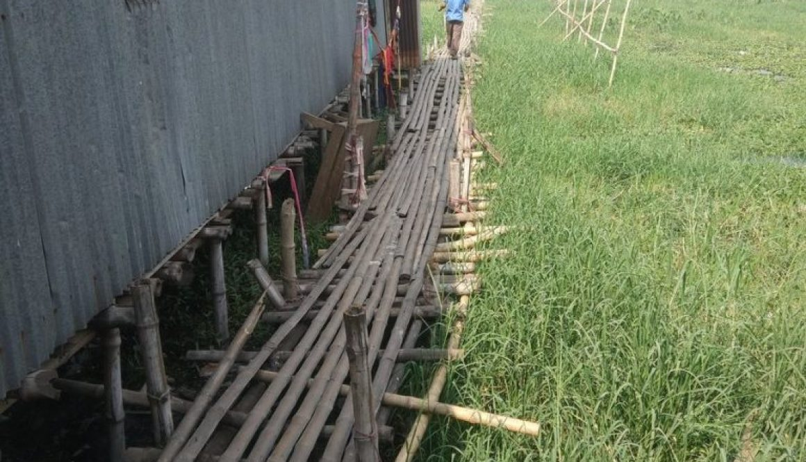 households using a bamboo bridge to walk over waste in informal settlement
