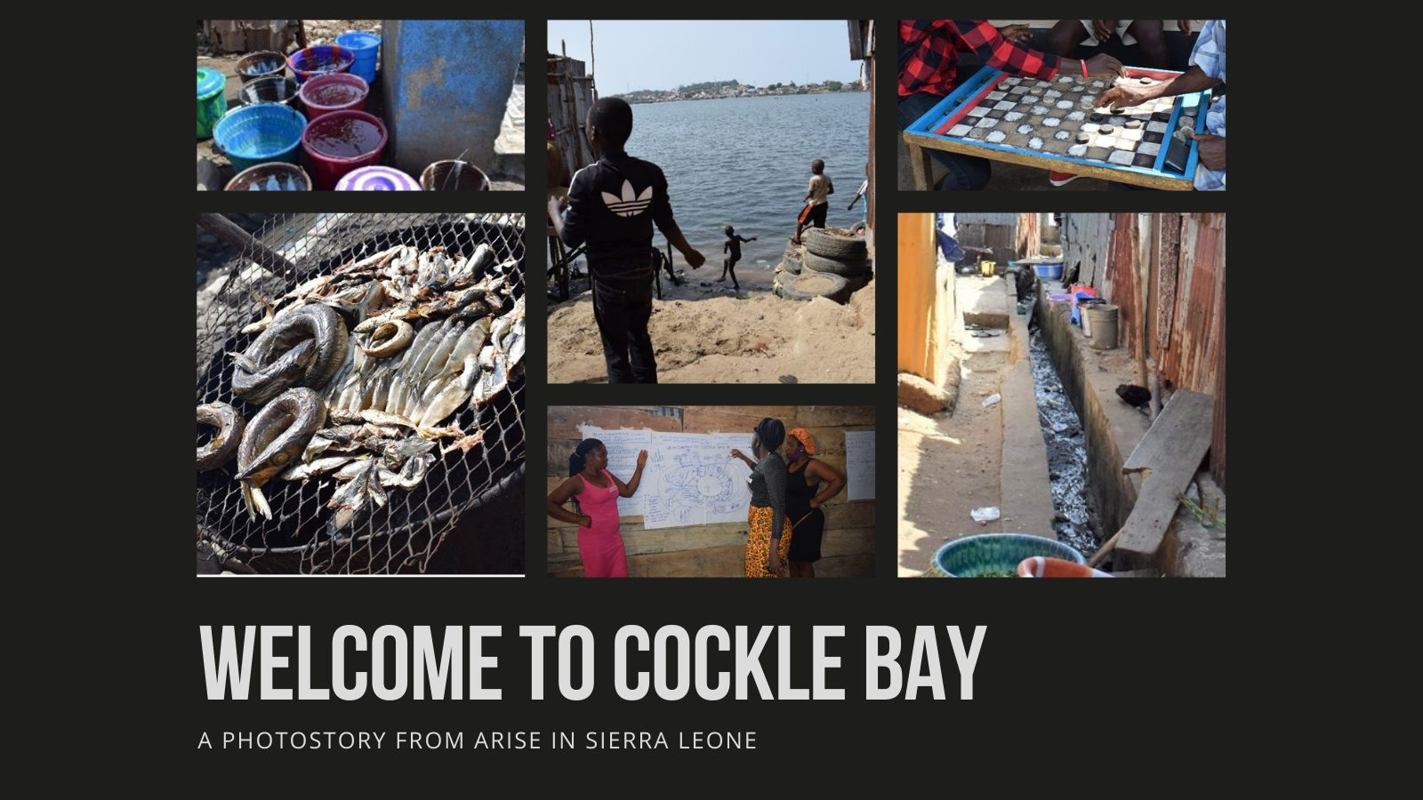 Welcome to Cockle Bay